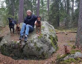 Simon och hundarna